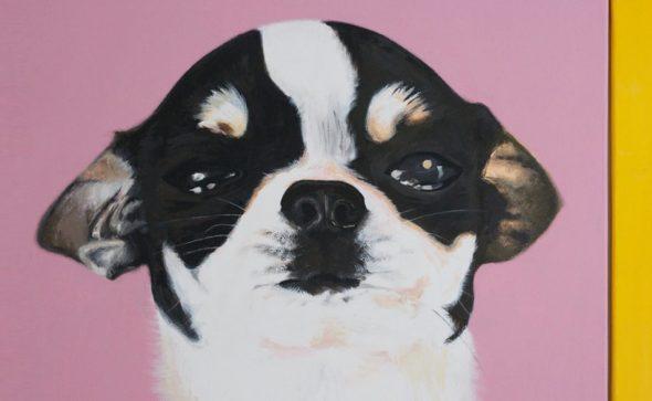 Dexter-portrait-meg-tait
